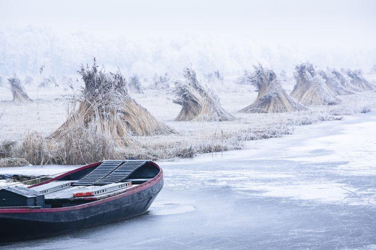 rietsnijders-winter